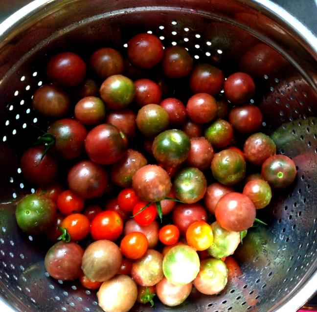 cherry tomatoes in colander