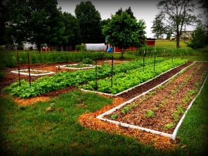 garden A 5-27