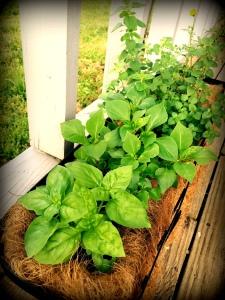 herb basket on porch