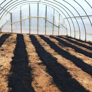 compost in hoop house