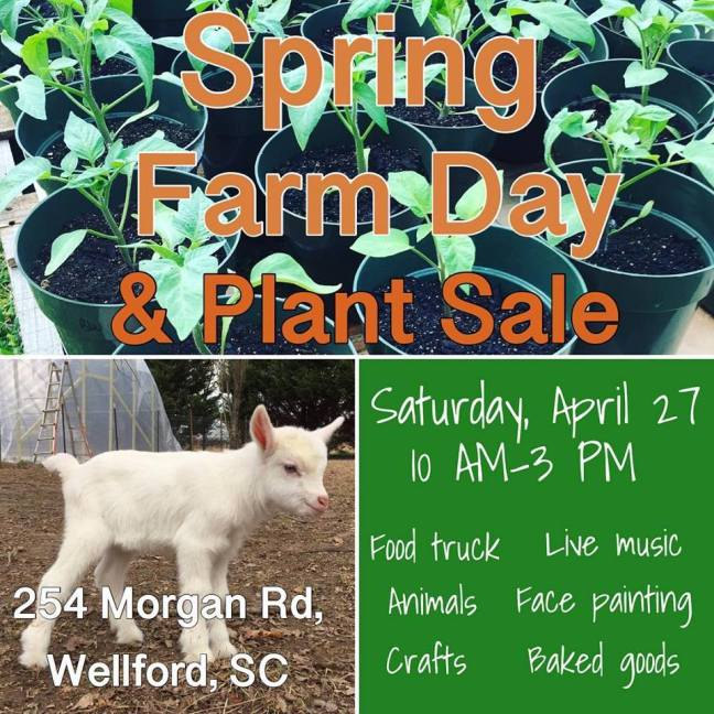 spring farm day graphic