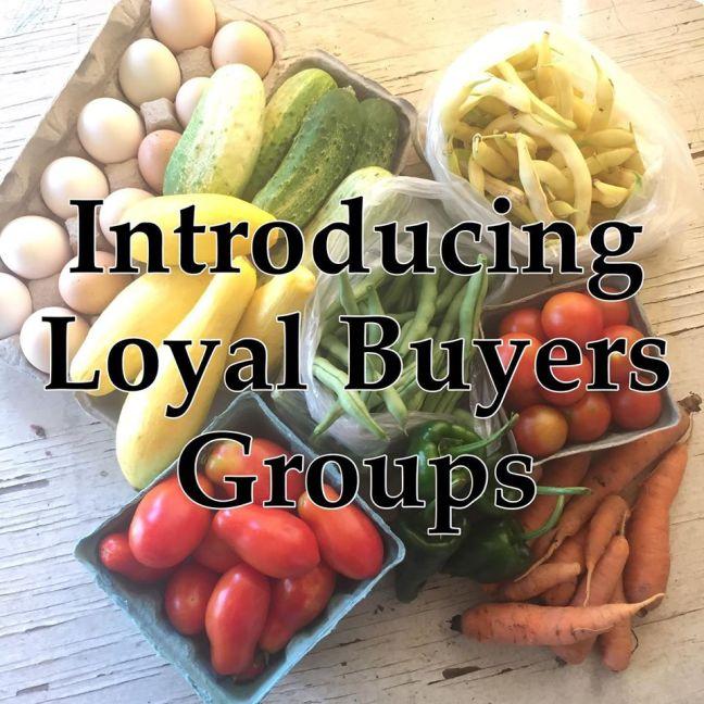 LBG promo photo